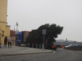 Příbramské náměstí ode dneška zdobí vánoční strom (13)
