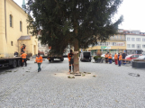 Příbramské náměstí ode dneška zdobí vánoční strom (9)
