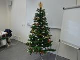 Vánoce ve vězení: Jak odsouzení prožívají adventní čas za mřížemi? (2)