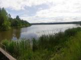 Okolí Padrťských rybníků v posledních týdnech doslova zmodralo (3)