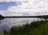 Okolí Padrťských rybníků v posledních týdnech doslova zmodralo (4)