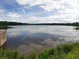 Okolí Padrťských rybníků v posledních týdnech doslova zmodralo (5)