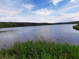 Okolí Padrťských rybníků v posledních týdnech doslova zmodralo (7)