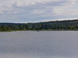 Okolí Padrťských rybníků v posledních týdnech doslova zmodralo (20)