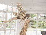 V Příbrami se otevřel Dům Natura, od dnešního dne je k dispozici veřejnosti (11)