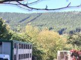 Za obcí Hluboš se převrátil návěs s prasaty, silnice je uzavřena (4)