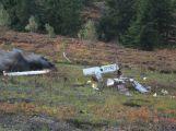 Složky IZS prověřily spolupráci u simulovaného pádu letadla v Brdech (19)