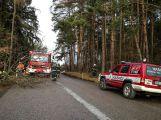 Vánoční tragédie: 26. prosince zemřel u Tochovic mladý řidič (4)