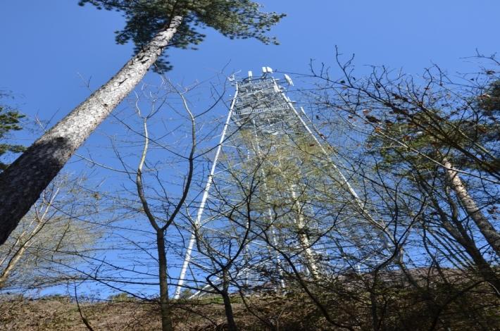 Rozhledna na Veselém vrchu u Mokrska (489 m) …