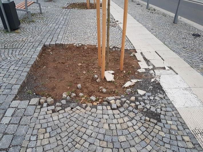 Náměstí TGM bylo osázeno stromy, což …