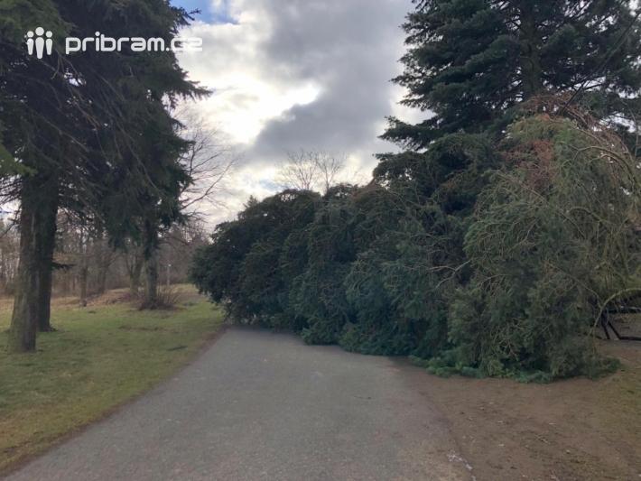 Pád vzrostlého stromu v obci Hvižďour.