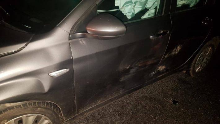 Dopravní nehoda osobního vozu s divokým …