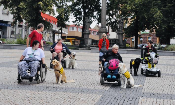 Rekreační středisko PROSAZ v Líchovech je …