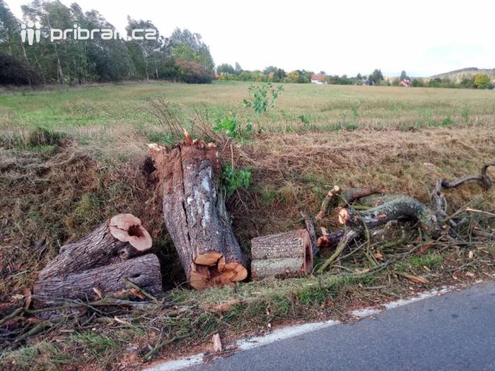 Čenkov: Padlý strom na auto
