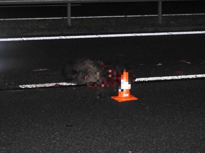 Kdopravní nehodě osobního vozidla značky …