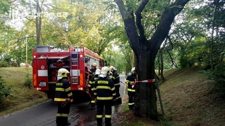Zásah hasičů si nyní v podvečer vyžádal hořící strom v Příbrami