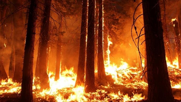 VÝSTRAHA – zvýšené nebezpečí vzniku požárů!