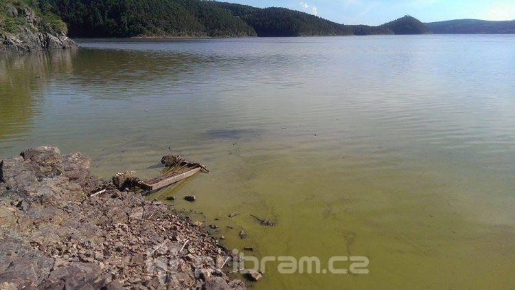 Voda na Orlíku se začíná zelenat, podle hygieny je zatím v pořádku