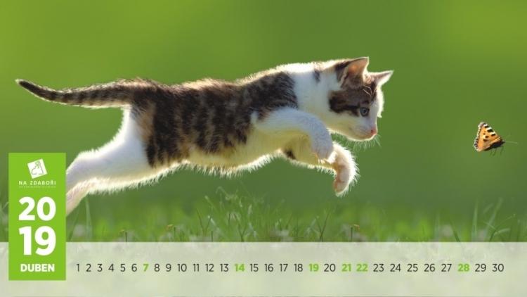 Kalendář, který pomáhá dobrým věcem