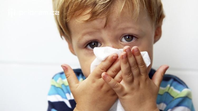 Nemocných chřipkou ve středních Čechách ubylo, přibylo pět obětí