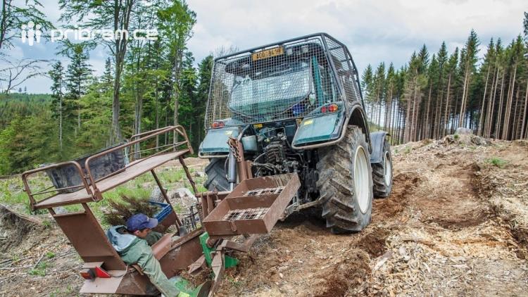 Vojenské lesy spustily největší zalesňovací akci v historii podniku:  23 milionů sazenic, z toho 15 milionů listnatých dřevin