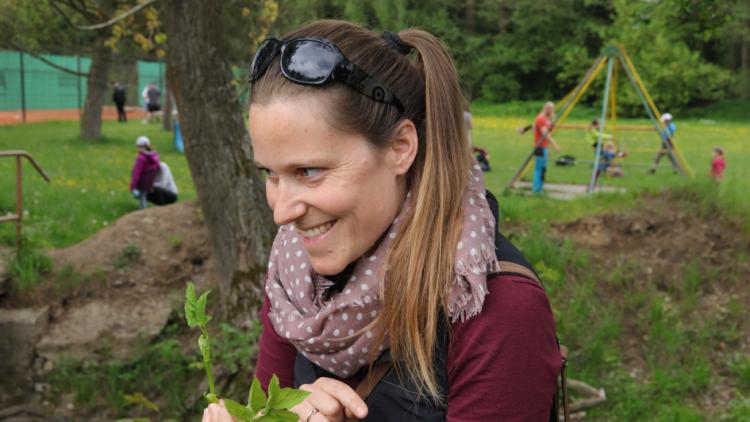 Příbramský lesopark je plný bylinek