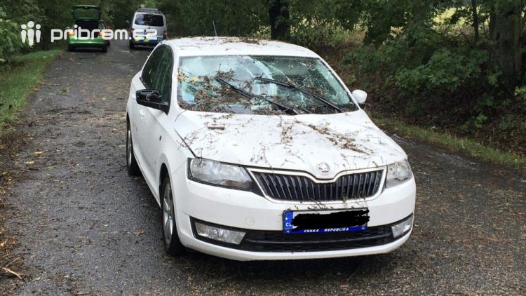 Na auto spadl strom, posádka vyvázla bez zranění