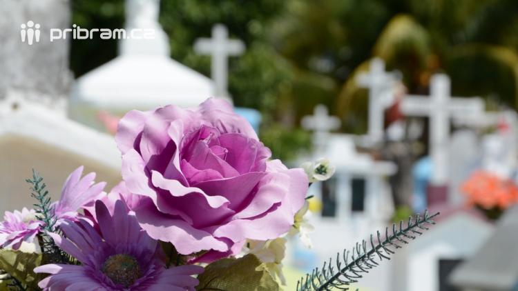 Dnes jsou Dušičky, tradiční svátek zesnulých