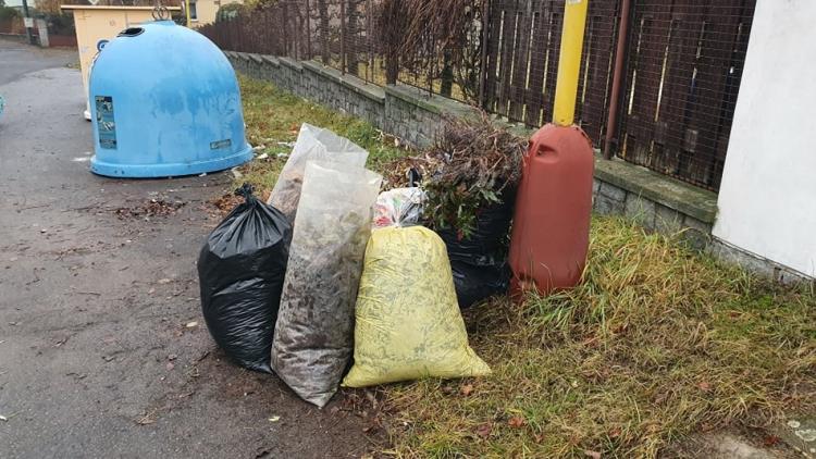 Hnědé kontejnery na zimu zmizely z  ulic. Jsou místa, kde to poznáte