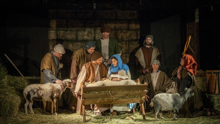 Sedlčanský živý betlém: Vánoční příběh v podání pastýřů, muzikantů i betlémských zvířat