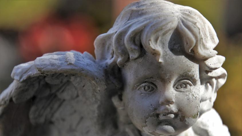 Město otevírá hřbitovy a v souvislosti s nízkou vytížeností MHD omezuje provoz některých linek