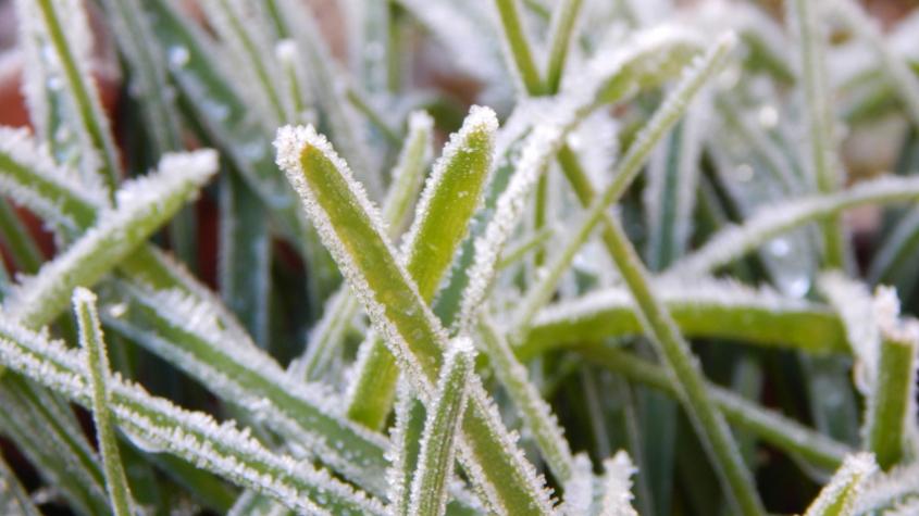 O víkendu budou teploty atakovat 25 stupňů, v příštím týdnu se ochladí a může i sněžit