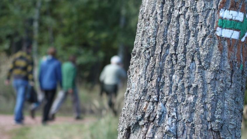 Vojenské lesy uzavřely dohodu s klubem turistů o rozvoji tras v lokalitách, které se otevřely veřejnosti