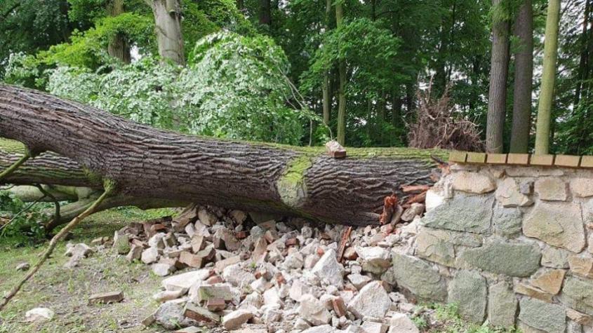 Pád vzrostlého stromu poškodil zámecký plot v Březnici, hasiči ulici uzavřeli