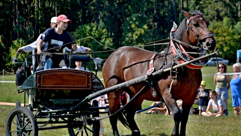 Z Lázu znělo cinkání postrojů a řehtání koní
