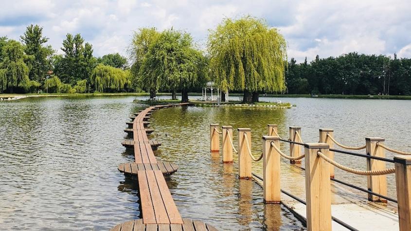 Na Orlíku a Slapech je zhoršená kvalita vody. Nový rybník dopadl opět na jedničku
