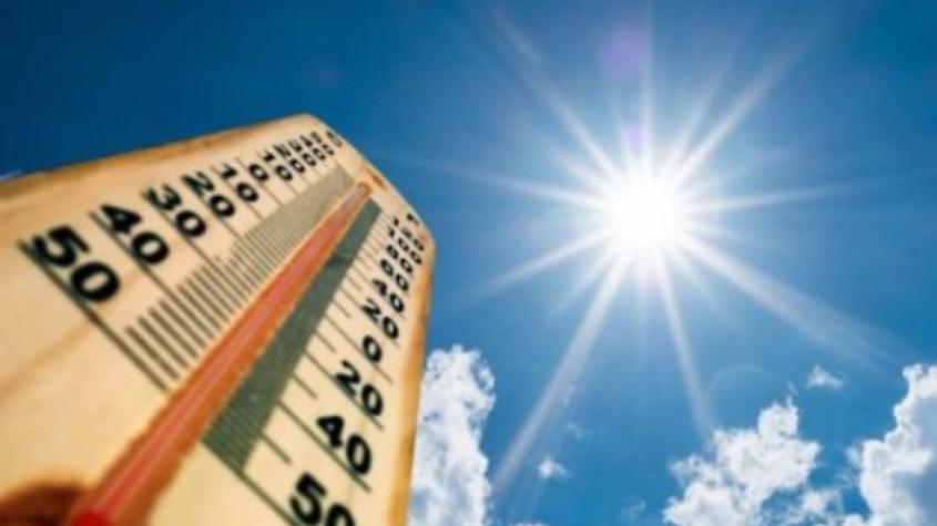 Ve čtvrtek v mikině, od pátku v tričku: Léto se vrací