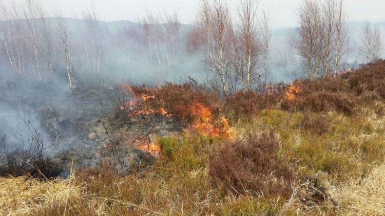V Brdech hoří 10 hektarů trávy, na místě zasahují jednotky z Příbramska a Hořovicka