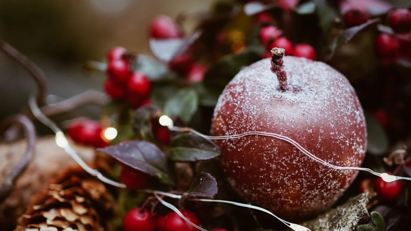 Bílé Vánoce letos nebudou, na Štědrý den má být pět stupňů