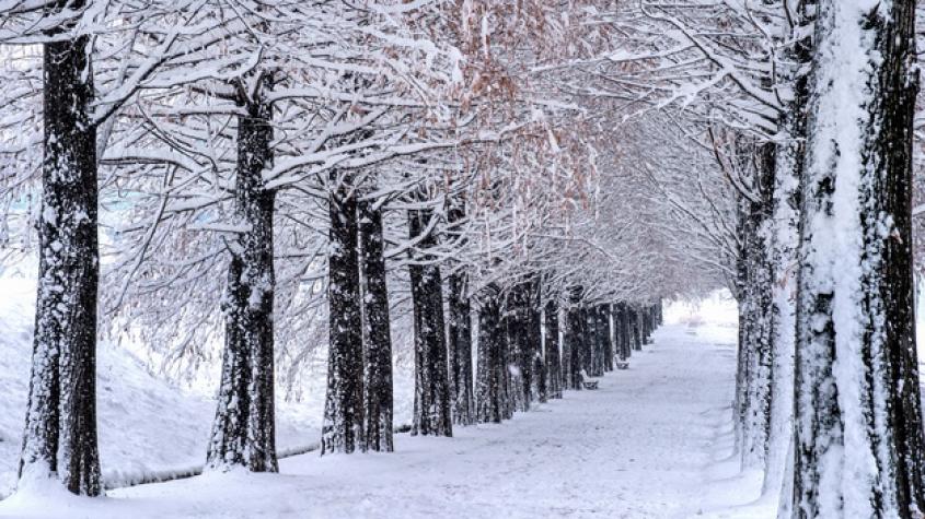 Blíží se pravé zimní počasí. Napadne sníh a teploty klesnou až na mínus deset stupňů