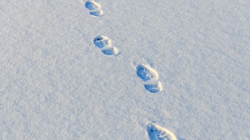 """Další příbramský """"expert"""" si neuvědomil, že po krádeži jsou vidět ve sněhu stopy"""