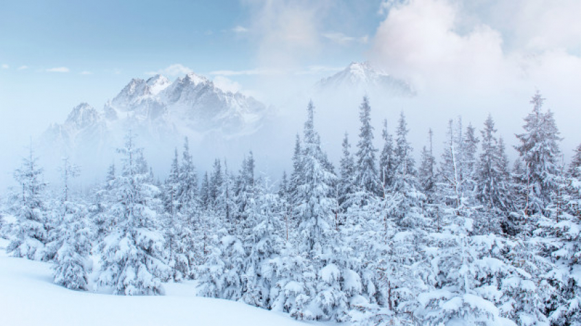 ČR má za sebou nejchladnější ráno zimy, bylo až minus 30 stupňů