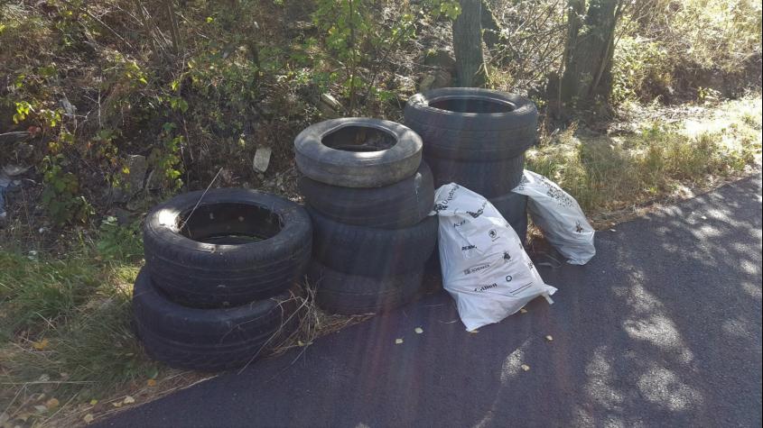 Potřebuje jarní úklid i vaše okolí? Přírodu vyčistí v Brodě nebo Novém Kníně