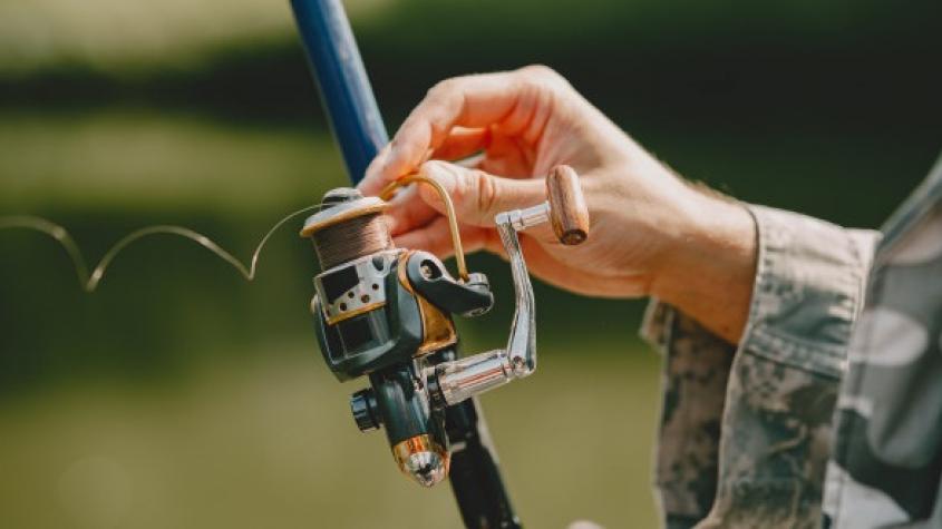 Rybáři mohou ode dneška lovit dravé ryby