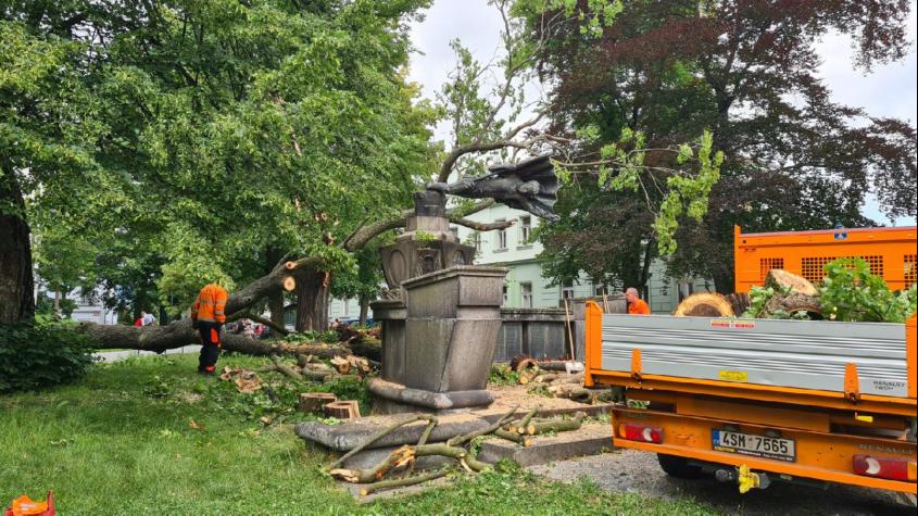 Padlý strom poničil sochu v Arnoštových sadech