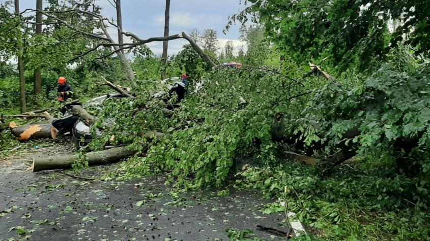 Do Česka dorazily silné bouřky, dva lidé zemřeli po pádu stromu