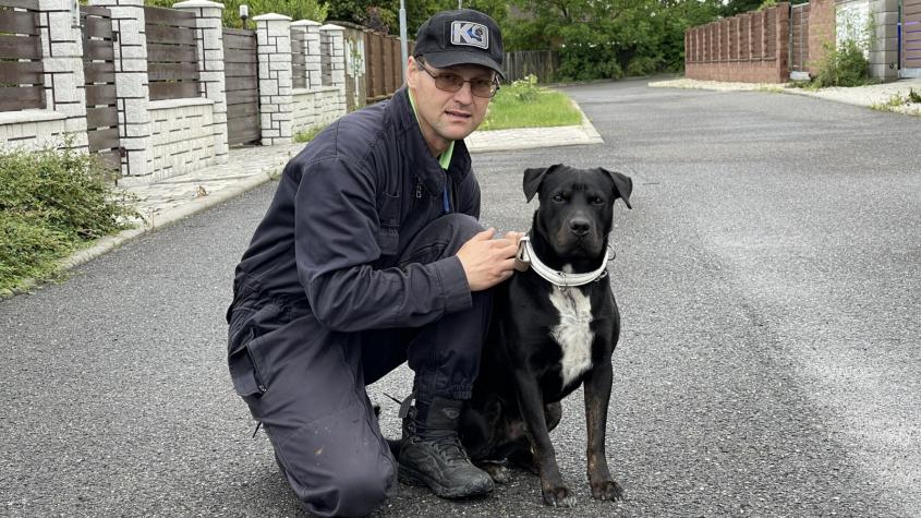 Cvičitel: Před pořízením psa by měli lidé zvážit své časové možnosti