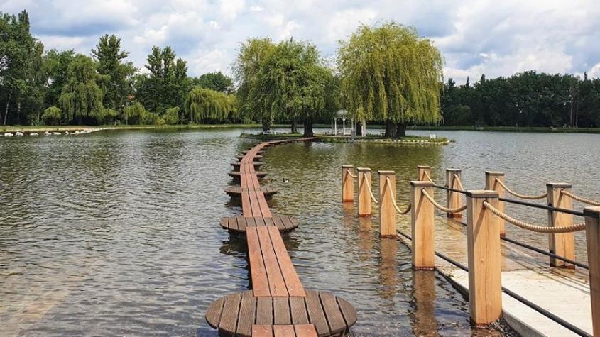 Hygienici: Na Nováku asi nebude voda vhodná ke koupání až do konce sezony. Cerkarií se nedá zbavit jinak, než že se rybník vypustí