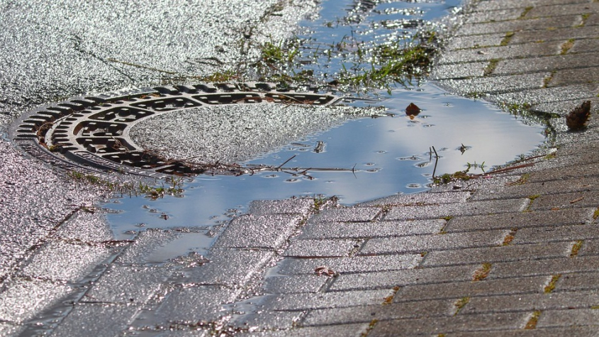 Neděle odstartovala sérii dešťových dnů. V příštím týdnu přibalte deštníky