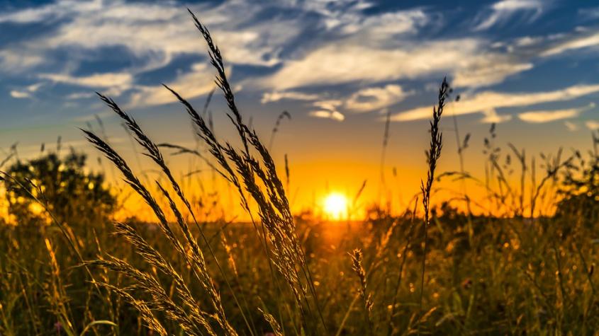 Druhá polovina léta bude teplotně průměrná, ke konci prázdnin i deštivá
